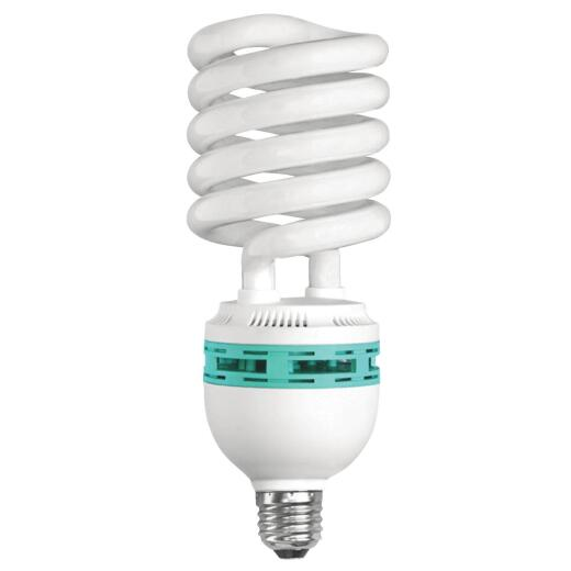 Compact Fluorescent Light Bulbs