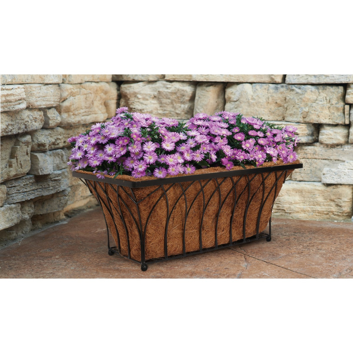 Best Garden 11 In. H x 22 In. Steel Rod Black Planter Image 2